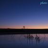 黎明の渡良瀬