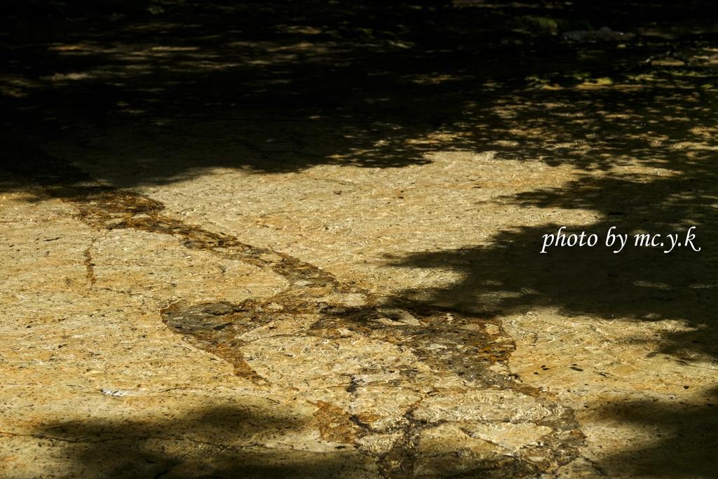 床滑の揺らぎ
