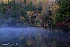 耽美な湖畔