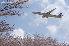 飛行機のある風景