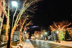 八幡坂と函館山の夜景
