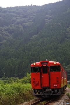 深緑の鉄路 3