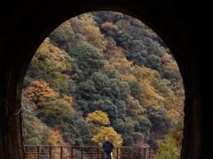 廃線跡「トンネル」➁