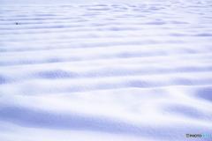 雪の波(2)