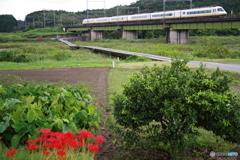 沈下橋のある鉄道風景 1