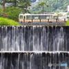 芦屋川の風景(撮りバス)