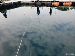 海上釣り堀 リフレクション