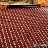 屋根に落葉