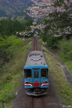 青春18きっぷの旅  2021春その4 樽見鉄道