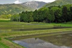 伊吹山から恵みの水