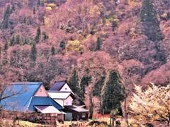 早春の山里