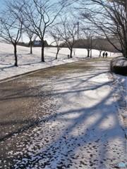 雪の日も2