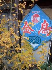 紅葉・鶏足寺