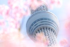 東京撮影旅行記 〜異色の組み合わせ〜 #2