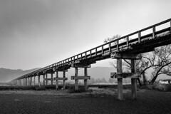 雨の蓬莱橋