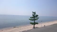誰もいない琵琶湖