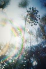 虹いろ✨のいたずら