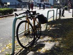 秋の停車位置