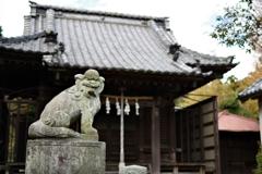 Kamakura散歩 八坂大神 狛犬さん