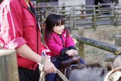 正月 姪 動物園にて 嬉しそうにロバに乗る