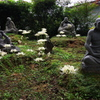 香林寺 彼岸花と石像2