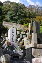 Kamakura散歩 寿福寺 日当たりのいいお墓