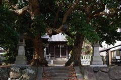 Kamakura散歩 八坂大神