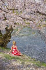 弘前さくら祭り 元気になった赤い服を着た金髪の女性とさくらと川