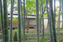 Kamakura散歩 英勝寺 竹林のなかの日本家屋