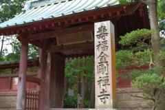 Kamakura散歩 寿福金剛禅寺