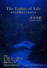 小玉先生の写真展のご案内 名古屋のノリタケの森にて