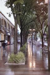 雨の矢場町 フィルム