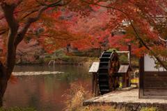 紅葉と水車小屋