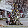クリスマスツリー フィルム