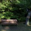 新緑のベンチ