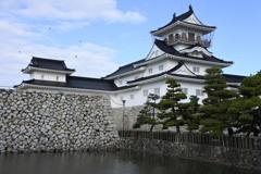 白と黒の城 1