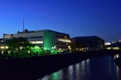 川のほとりのグリーンライト