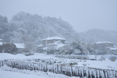 農村雪景色