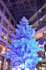 十二月の青い樹