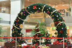 クリスマス・アーチ
