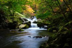 ~秋~ 龍神の滝