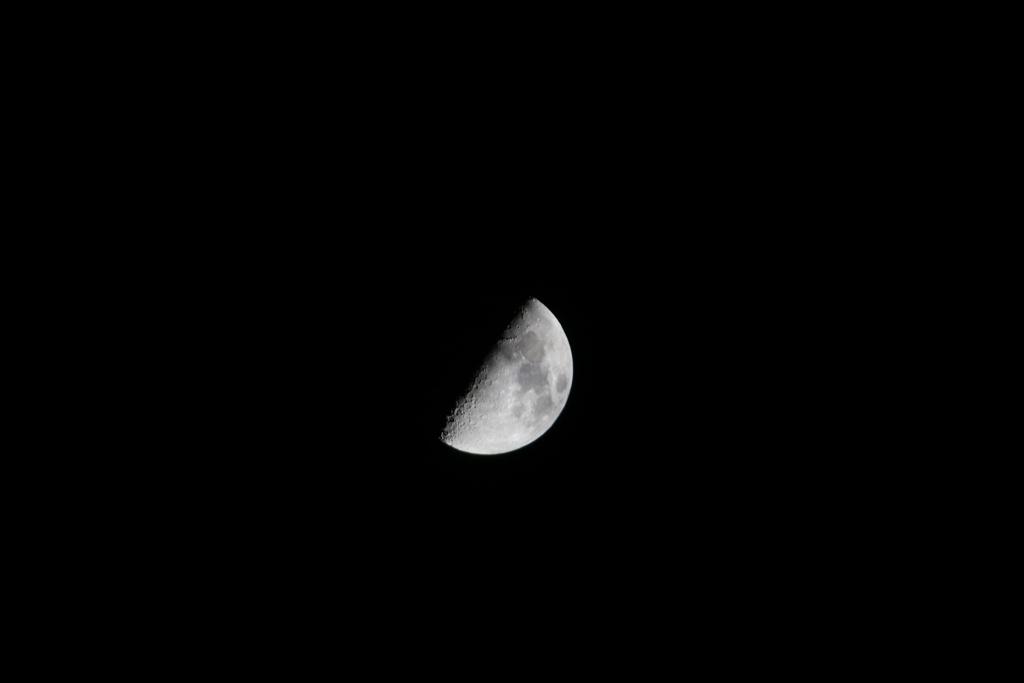綺麗な半月