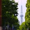 初夏のテレビ塔