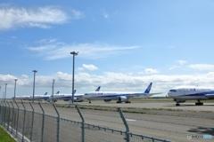 飛行機がいっぱい