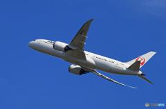 「晴れ」 JAL 787-8 JA842J 出発です