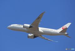 「蒼空」JAL 787-8 JA836J  出発です ☀