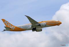 「すかい」 scoot 787-8 9V-OFC Takeoff