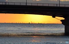 「良い天気」☮ 橋の下も眩しい ☮