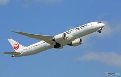 「すかい」 JAL 787-9 JA868J 出発
