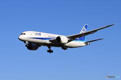 「あおぞら」ANA 787-8 JA828A 到着です